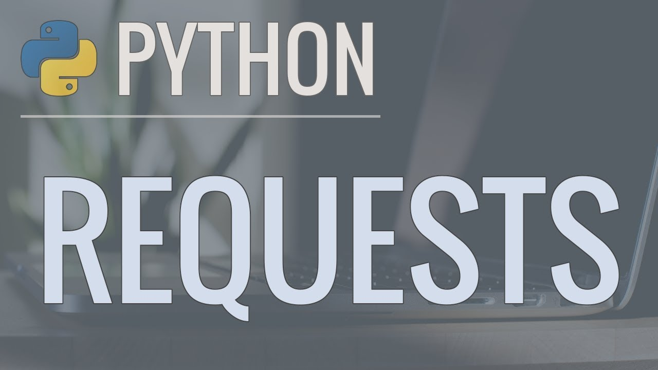 python requests code example