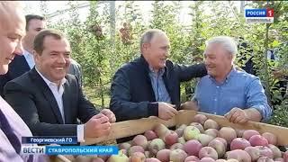Владимир Путин и Дмитрий Медведев познакомились с суперинтенсивными садами на Ставрополье