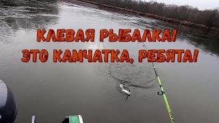 Хорошая рыбалка на Камчатке