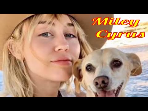 Miley Cyrus's Dogs
