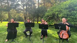 All You Need is Love - Wedding String Quartet: Ariana Strings