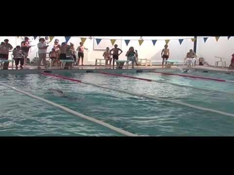 Al Muna Swimming Sports Youtube