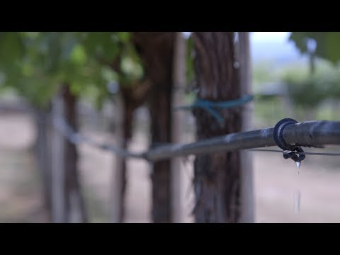Italian water utility goes digital with ABB Ability