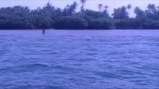 Snorkling at Pulau Tunda