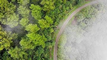 정선 운탄고도, 걸어볼까? 40km, 안개속으로, 비박, Walk Alone 40km on Untan Trail, Fog, Bivouac