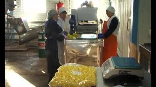 видео оборудование для вакуумирования продукции