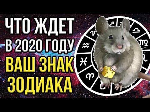 ЧТО ЖДЕТ В 2020 ГОДУ ВСЕХ ЗНАКОВ ЗОДИАКА