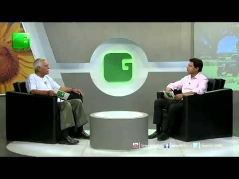 Arbi ki Kheti - Colocasia Farming In Baatein Kheti Ki On Green TV