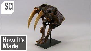How It's Made: Skeletal Replicas