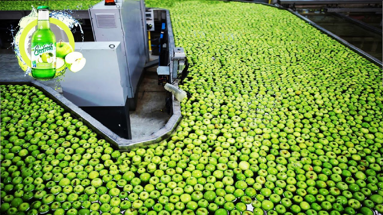 How Fruit Juice Made in Factory - Papaya, Pomegranate, Apple, Lime Juice Production Line 🍏