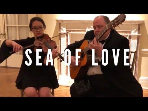 Sea Of Love - Violin Guitar Cover