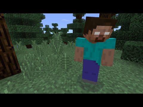 How To Spawn Herobrine In Minecraft Pocket Edition (fake