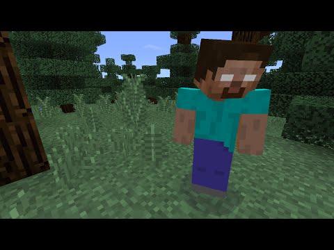 How To Spawn Herobrine In Minecraft Pocket Edition (fake