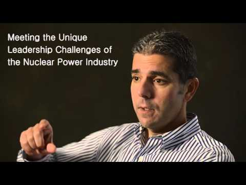 Nuclear Power Industry Case Study