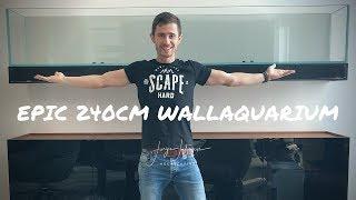 My biggest Aquascaping mistake I ever made! - Epic 240cm wall mounted aquarium Vlog