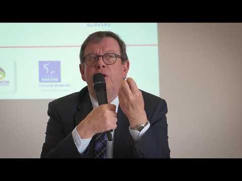 Plan nautisme et attractivité : ce que fait le département pour le maritime