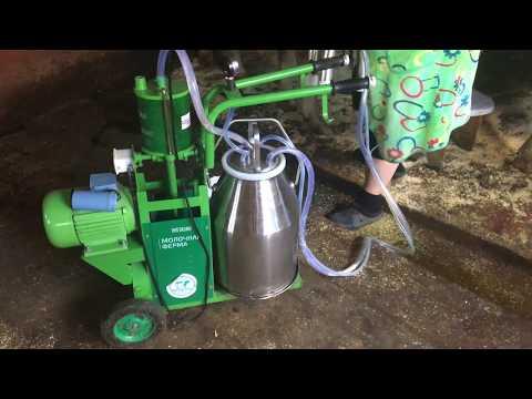 Как доить корову доильным аппаратом доюшка видео