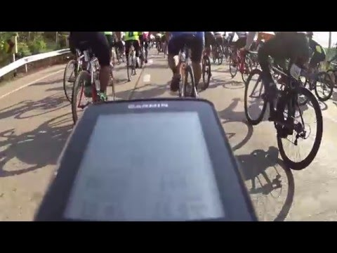 Tour Of Police 8 Cycling
