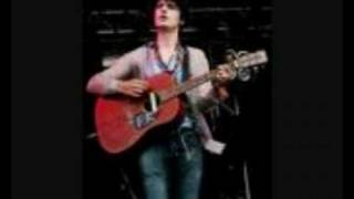 Pete Doherty - Lust of the Libertines