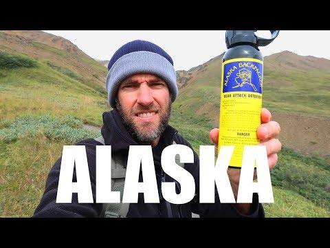 How Expensive is Traveling in ALASKA? One Day in Denali National Park