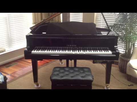 Player Piano Rental Baltimore