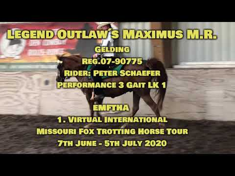 Legend Outlaw's Maximus M.R placed 1st. 3 Gait Performance