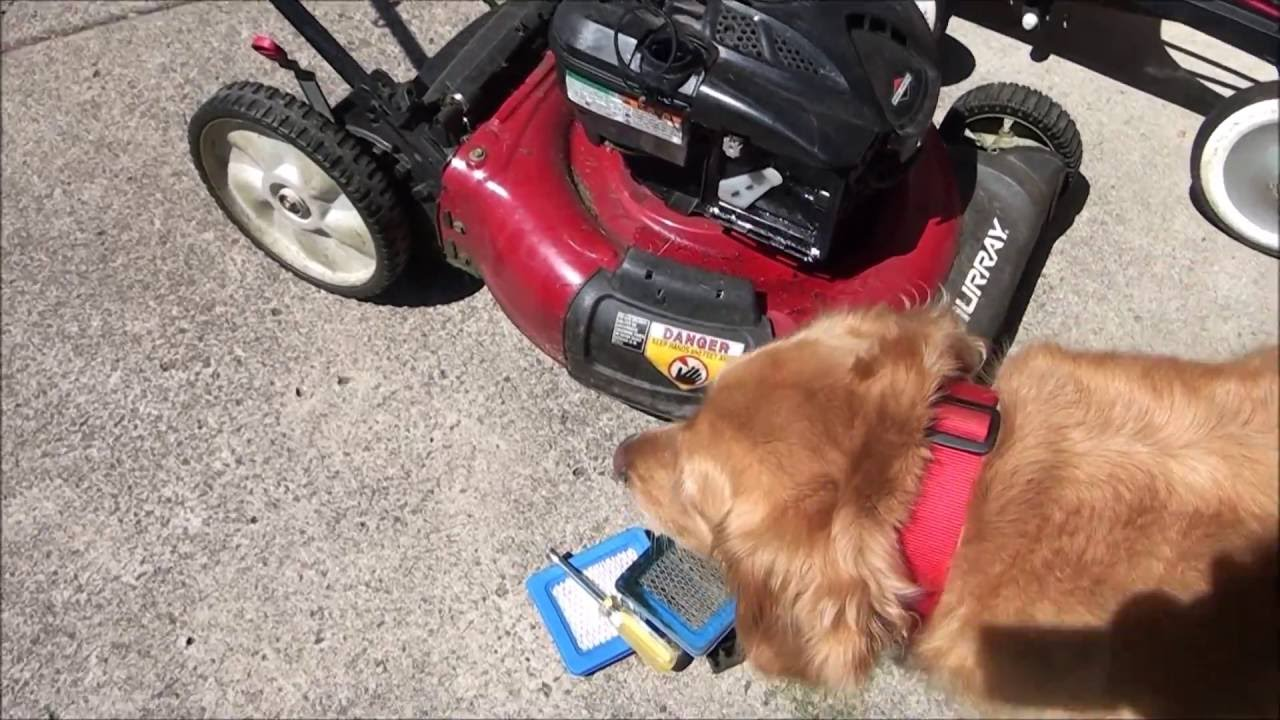 HOW TO FIX a MURRAY LAWNMOWER that WILL NOT START or RUNS POOR after it was  TIPPED OVER