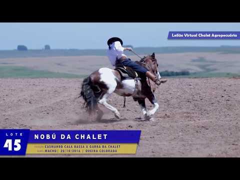 LOTE 45 - Nobu da Chalet