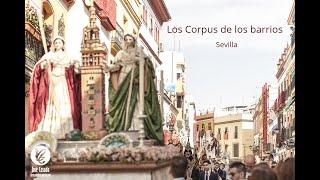 ESPECIAL CORPUS DE LOS BARRIOS