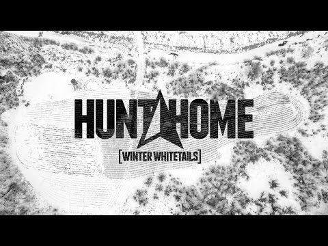 Winter Whitetails