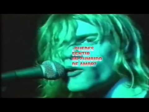Nirvana - Love Buzz (Live) (Subtitulado en Español)