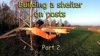 Building a overnight shelter on posts using mostly fresh green lumber direct from the forest. Part 2