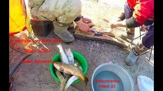 рыбы много рыбалки мало река Или март 2020 г мини видео отчет