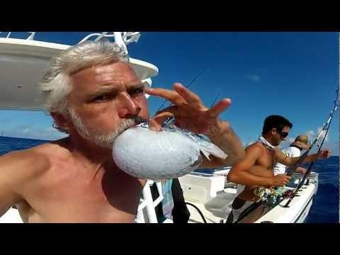 Neil Burnie blows up a fish!
