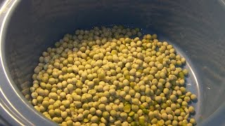 How To Make Green Pea Soup Or Stew (dried Whole Or Split Green Peas)