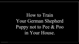 German Shepherds: Potty Training German Shepherd Puppies  - FREE MINI Course German Shepherds