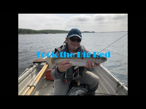 Dry Fly Fishing On Grafham Water