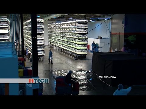 "iTech: ""AeroFarms"" Farming with No Soil & Sunlight, 130 times more produce"