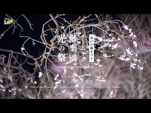 チームラボ 偕楽園 光の祭 / teamLab: Digitized Kairakuen Garden