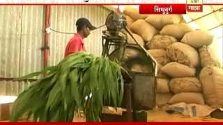 712 : Sindhudurg : Sheli palan : Goat Farming by Vijay & Kavita Ghatge family