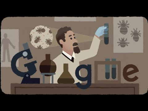 Rudolf Weigl: Google doodle celebrates 138th birthday of Polish ...