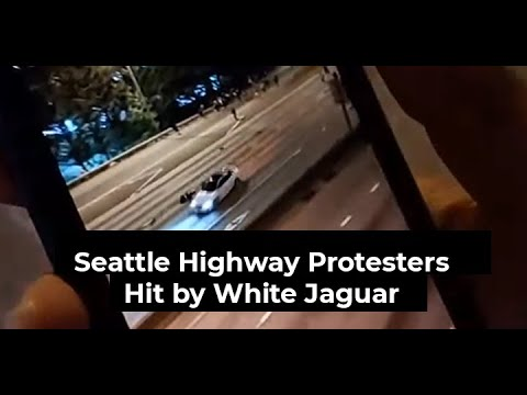 24-Year-Old Seattle Protestor Summer Taylor Dies After Being ...