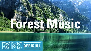 Forest Music: Loose Relaxing Music - Slow and Smooth Background Music for Work, Study and Read