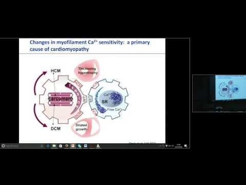 """""""Engineering Heart Tissue for In Vitro Testing & Cardiac Repair"""" - Prof. Dr. Med. Thomas Eschenhagen"""