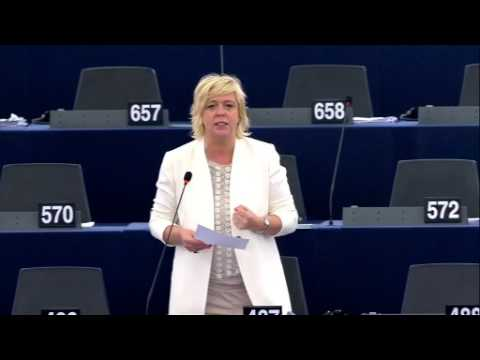 Hilde Vautmans 06 Jul 2017 plenary speech on Liu Xiaobo and Lee Ming che