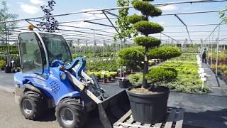 Упаковка лиственных деревьев в питомнике растений №1 Гарди