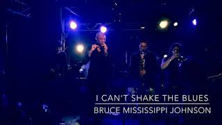 BRUCE MISSISSIPPI JOHNSON - I Can't Shake The Blues @ OGib 13.01.18