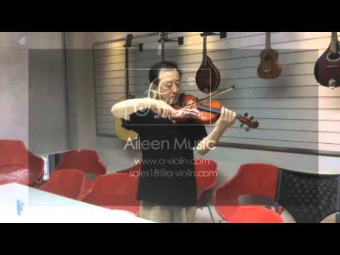 Hot Sale Student ViolinAVL16G from Aileen Music