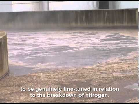 Optimizing energy consumption of wastewater treatment - GREENBASS™- SUEZ
