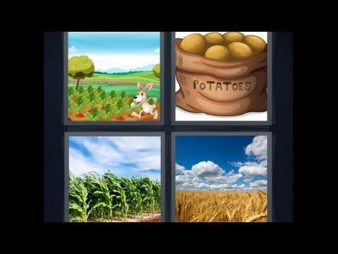 4 Bilder 1 Wort Level 6